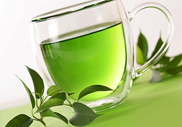 750تن برگ سبز چای از چایکاران رامسر خریداری شد